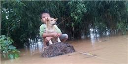 Rơi nước mắt với cậu bé 6 tuổi bơi ra cứu chú chó giữa dòng nước lũ