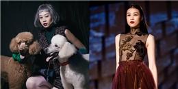 Kikki Lê bất ngờ xác nhận rút lui khỏi Asia's Next Top Model 2017