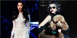 Sự thật về 'quyền tham gia Next Top Model châu Á' của Kikki Lê