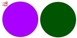 Nhìn thấy 'cái gì đó' trong những vòng tròn này thì mắt bạn đạt 10/10