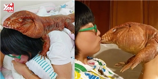 Cô gái nổi tiếng nhờ nuôi thú cưng là thằn lằn mặt nọng