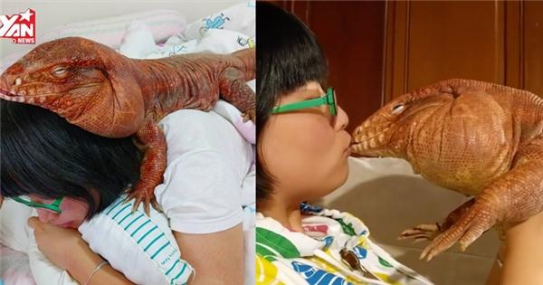 Cô gái nổi tiếng nhờ nuôi thú cưng là thằn lằn 'mặt nọng'