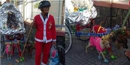 Cay mắt với câu chuyện của bà cụ Noel và 'cỗ xe tuần lộc' ở Tây Ninh