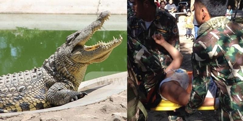 Du khách bị cá sấu tấn công chỉ vì muốn lưu giữ kỉ niệm đẹp
