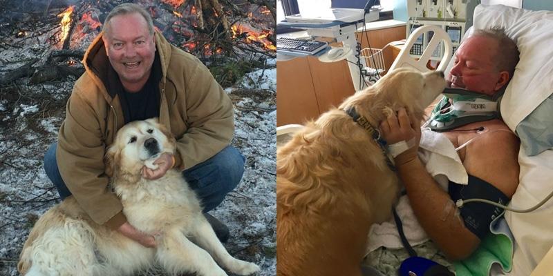 Ấm lòng cô chó ủ ấm cho chủ và sủa to kêu cứu suốt 20 tiếng đồng hồ