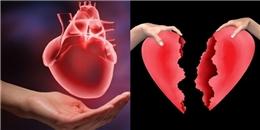 Có thể bạn chưa biết, vì sao khi thất tình tim lại nhói đau?