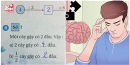 'Nhức óc' với bài toán đố dành cho học sinh lớp 2