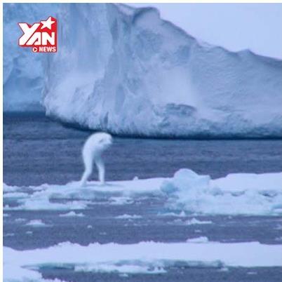Xuất hiện quái vật cao 30 mét giống người ở Nam Cực