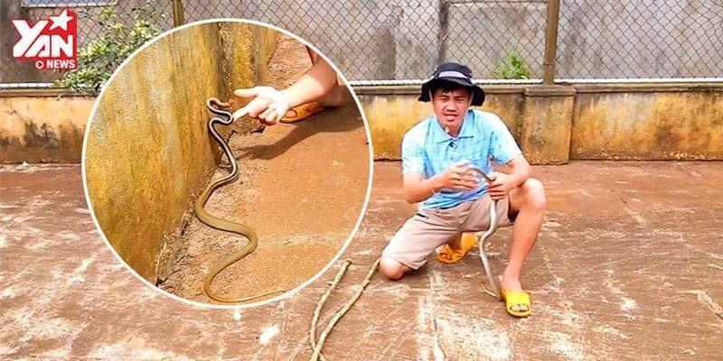 Nam thanh niên gây hoảng hốt khi đùa giỡn rắn hổ ngựa trong sân nhà