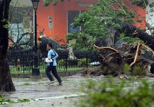 Siêu bão Haiyan càn quét, Philippines hoang tàn