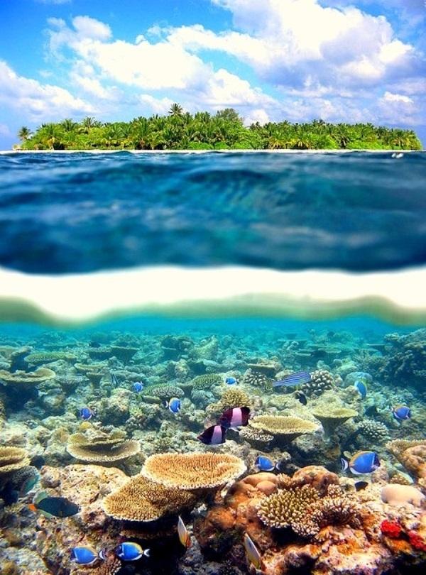 Quần đảo Polynesia, Pháp