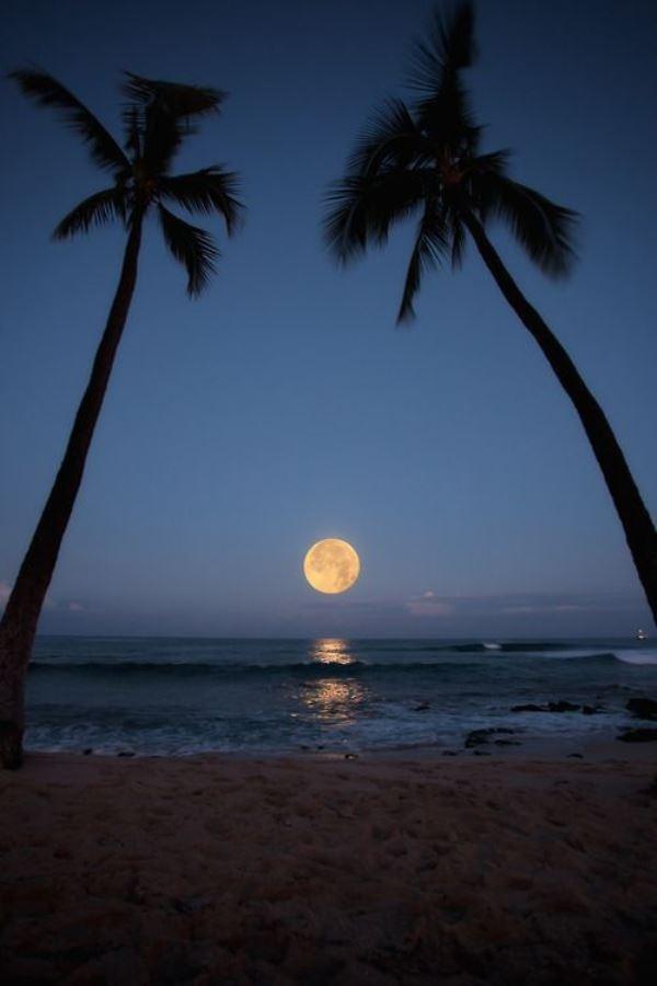 Bãi biển Honols, Alii Drive, Kailua Kona, Hawaii