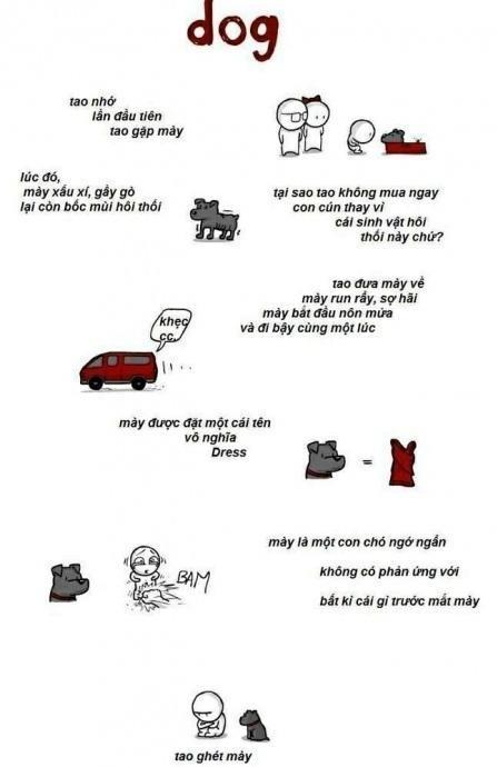 Câu chuyện cảm động về chú cún được kể bằng truyện tranh