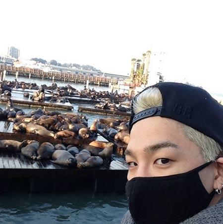 Taeyang (Big Bang)