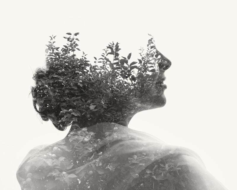 Chùm ảnh nghệ thuật kết hợp giữa con người và thiên nhiên