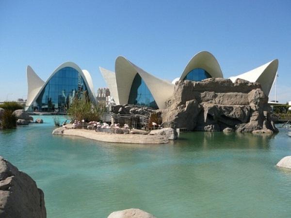 Ngắm những hồ thủy sinh đẹp nhất thế giới
