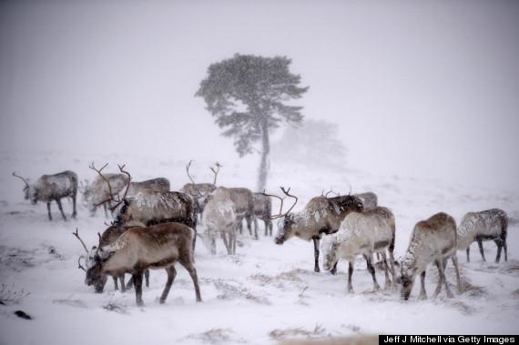 11 địa danh phủ trắng tuyết tinh khôi
