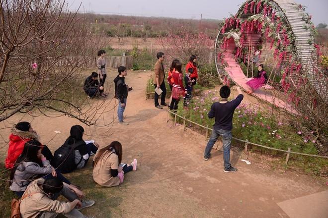 Từng tốp những bạn trẻ rủ nhau chụp ảnh trong vườn xuân.