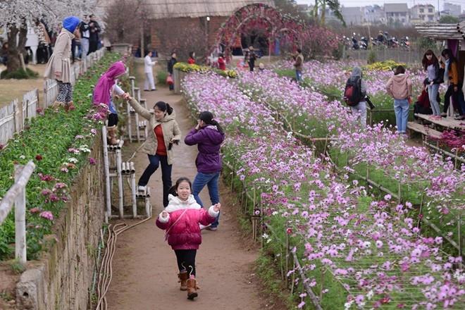 Tại khu vườn thượng uyển, mức giá vé 25.000 đồng cho một người vào tham quan được cho là dễ chịu và phù hợp với mọi đối tượng như gia đình, sinh viên học sinh.