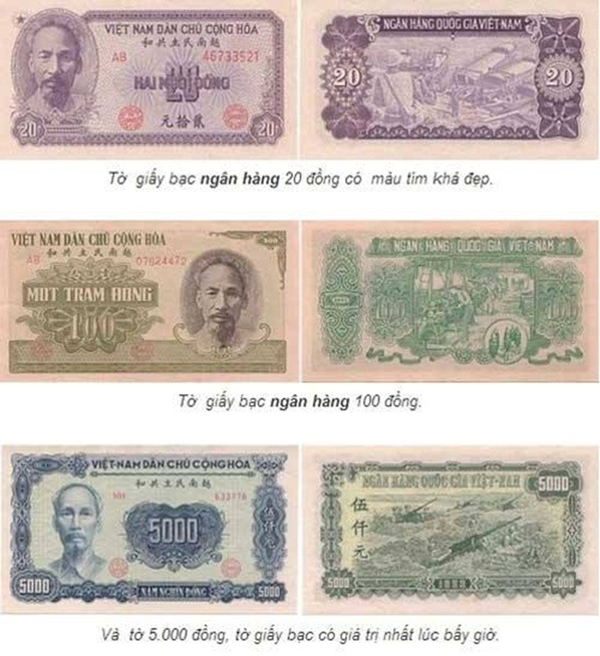 Tiền giấy do Ngân hàng quốc gia Việt Nam ban hành năm 1951.
