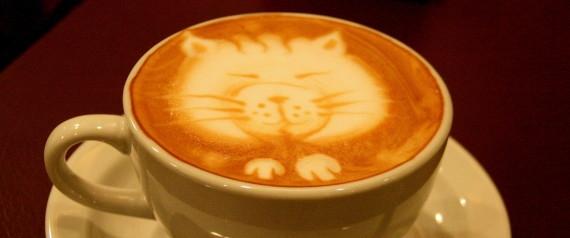 12 điều có-thể-bạn-chưa-biết về cà phê