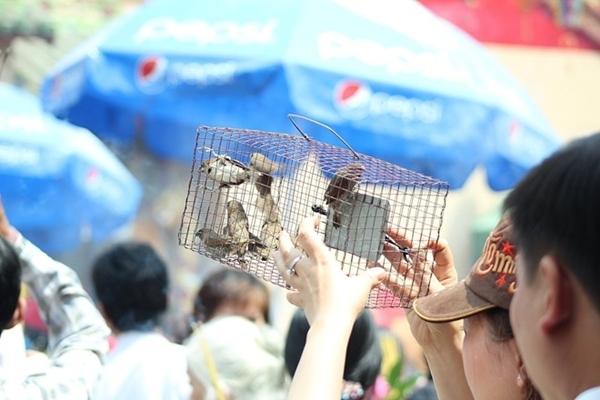 Vào vai khách hành hương để qua mắt lực lượng chức năng, nhiều người bán chim phóng sinh mang chim vào tận chùa bán, mỗi lồng chim vài con có giá từ 300.000 - 400.000 đồng.