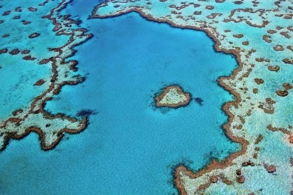 Nhìn từ trên cao mới có thể chiêm ngưỡng hết vẻ đẹp của rặng san hô đặc biệt với hình dáng trái tim ngộ nghĩnh. Nó nổi bật giữa làn nước trong xanh giữa vùng biển bao la của nước Úc.