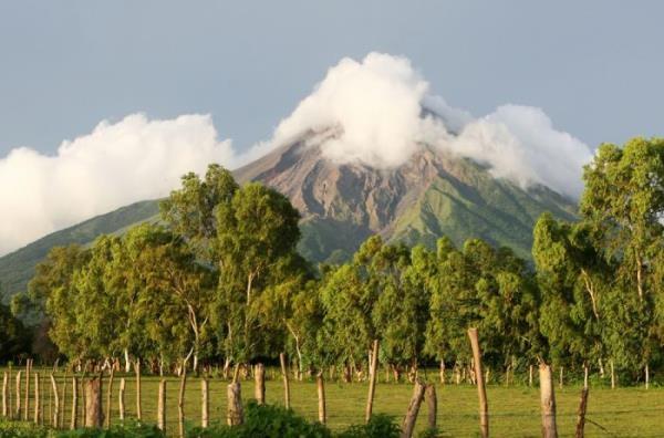 Rừng cây xanh ngắt tô điểm cho vẻ đẹp của ngọn núi lửa sừng sững giữa trời