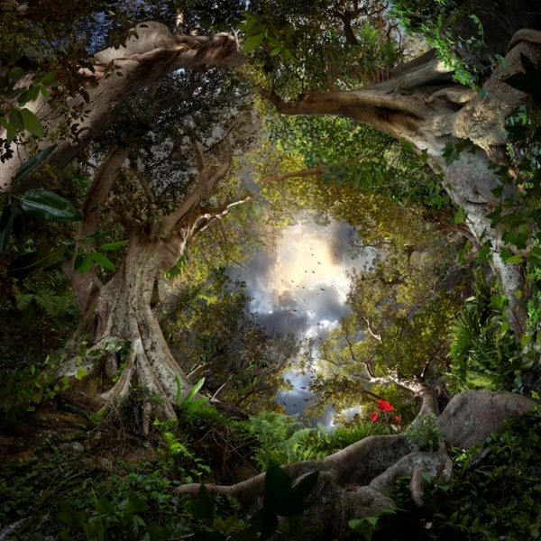 """Ngẩn ngơ với """"thế giới ảo"""" tuyệt đẹp có thật"""