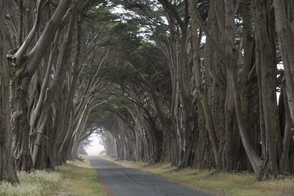 Những con đường quyễn rũ nhất thế giới