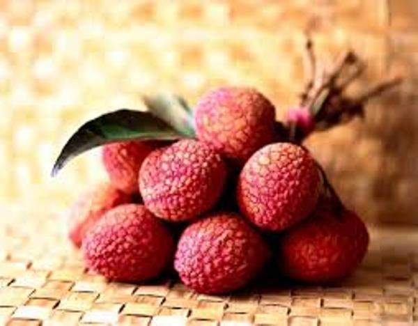 """""""Điểm mặt"""" những loại trái cây nên và không nên ăn trong những ngày nóng"""