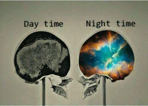 Tại sao chúng ta hiếm khi nhớ được giấc mơ qua đêm?