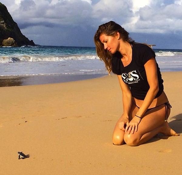 """Gisele dành thời gian nghỉ ngơi của mình tại một bờ biển. Tại đây cô đã có cơ hội """"làm quen"""" với một chú rùa biển."""