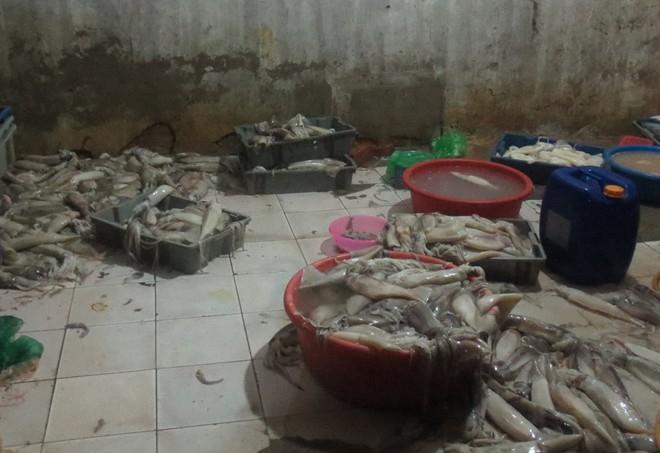 Trong kho hàng của bà Ngô Thị Nụ (46 tuổi, ở phường Bạch Đằng, quận Hai Bà Trưng), cảnh sát môi trường phát hiện đang lưu giữ 750 kg mực ống.