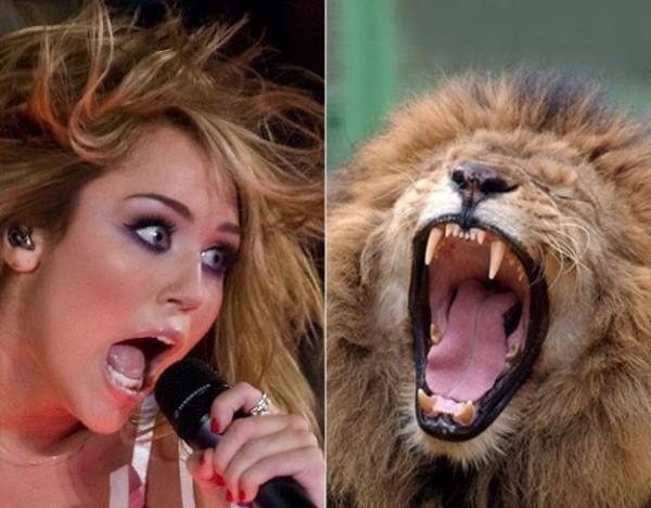 Nàng công chúa nổi loạn Miley Cyrus.