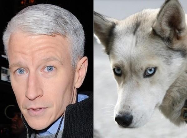 Anderson Cooper - người dẫn chương trình nổi tiếng của kênh truyền hình CNN.