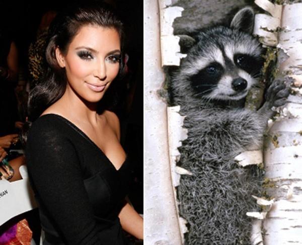Người mẫu, diễn viên Kim Kardashian.
