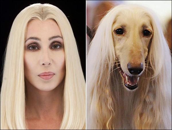 Nữ danh ca Cher.