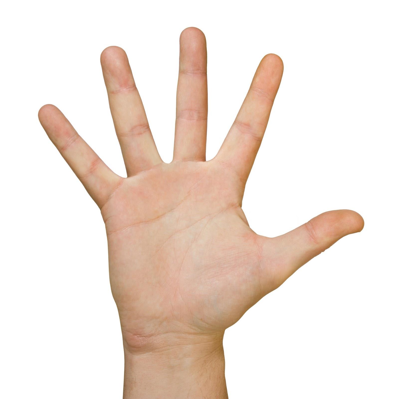 Cách chọn người yêu chung thủy thông qua bàn tay