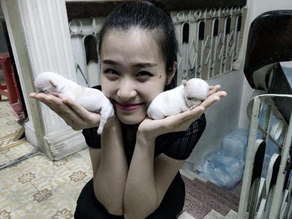 """Đông Nhi thích thú khi được chăm sóc và vui đùa cùng hai chú cún sơ sinh bé xíu. Cô bày tỏ niềm hạnh phúc của mình khi nhìn thấy hai bé cún xinh xắn: """"Hai bé cún xinh không cả nhà?"""""""