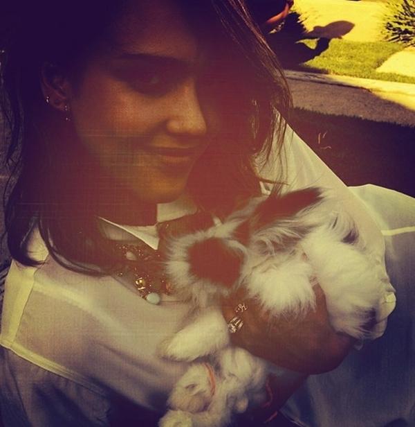 Jessica Alba vui đùa cùng chú thỏ phục sinh bunny. Cô đã có khoảng thời gian dài sống chung cùng chú thỏ này.
