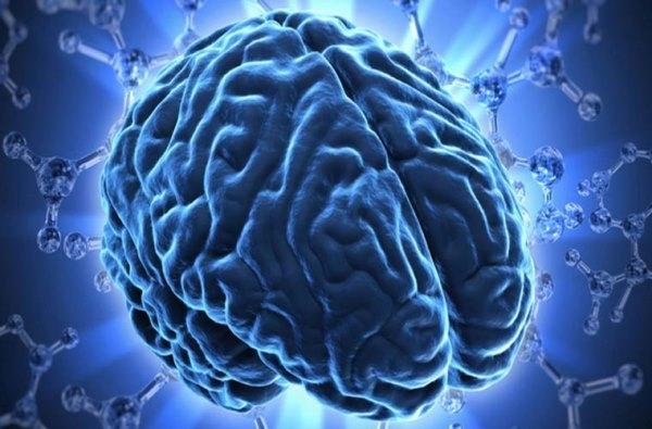 Sự thật đáng kinh ngạc về bộ não có thể bạn chưa biết