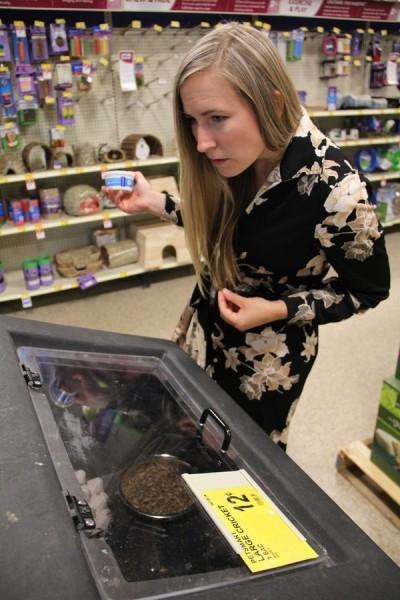 Kinh ngạc cô gái chia sẻ công thức nấu ăn từ giun, dế, chuột