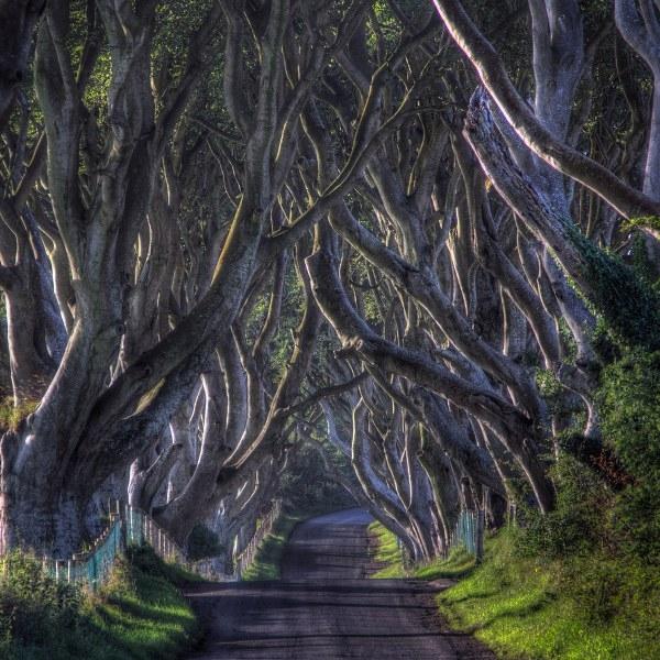 Chiêm ngưỡng cảnh đẹp mê mẩn trong các câu chuyện cổ tích ngoài đời thực