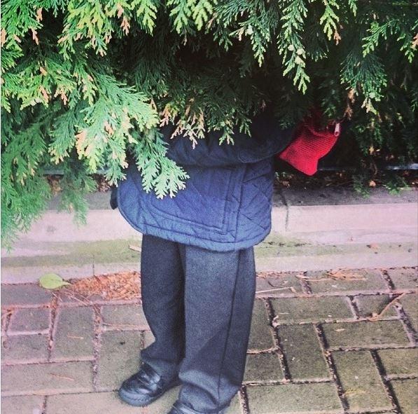 """""""Vâng! Chỉ là cái cây đang mặc áo khoác và quần dài thôi nhé"""""""