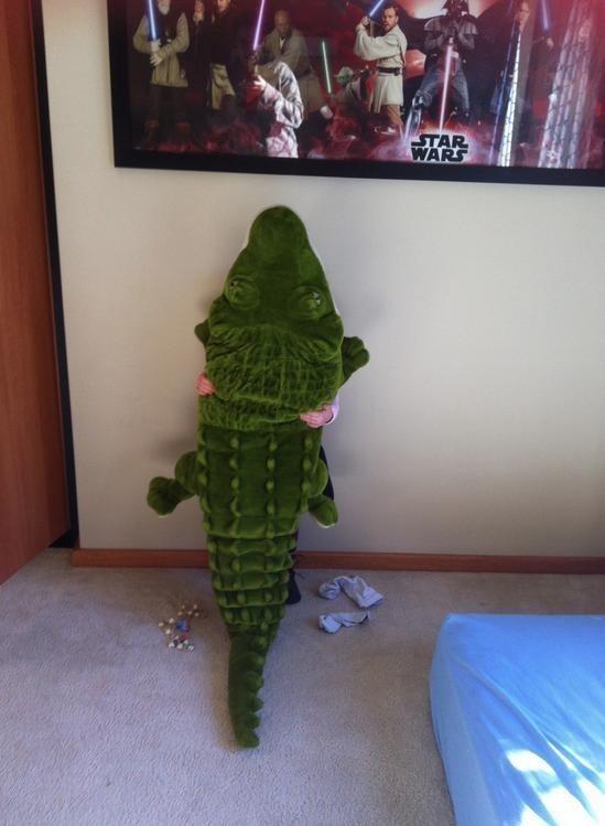 """""""Cá sấu leo lên tường nhé, không phải tớ đâu"""""""