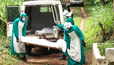 Dịch Ebola có nguy cơ bùng phát toàn cầu
