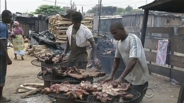 Đại dịch Ebola, những bữa tiệc tàn ác và sự trả thù của tự nhiên