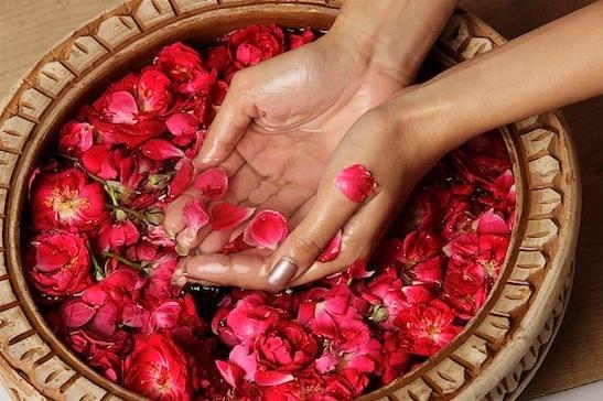 Những tác dụng hữu ích của nước hoa hồng