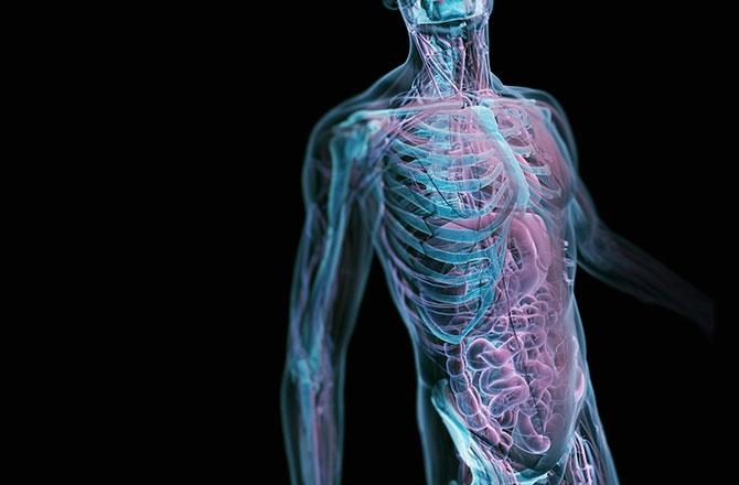 9 điều bạn không biết về cơ thể của mình.